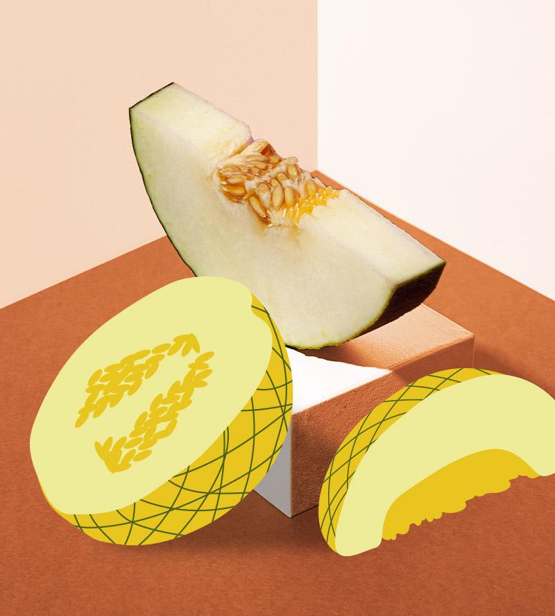 6 melão